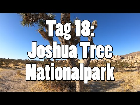 #OTRAmerika19 - Tag 18: Joshua Tree Nationalpark