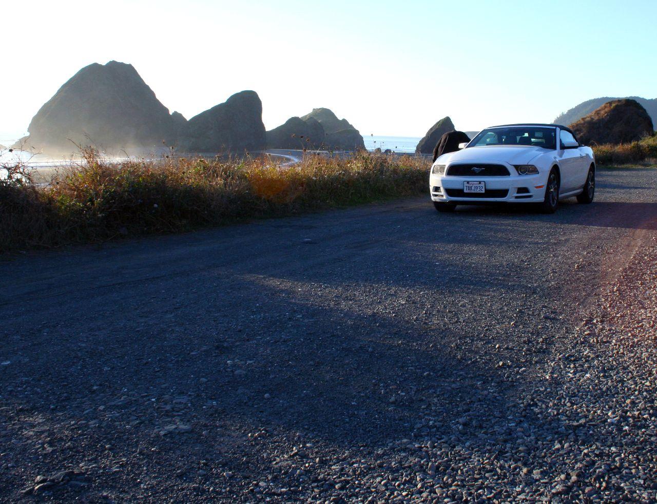 Mustang (4)