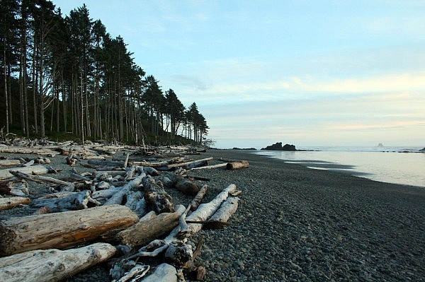 Ruby Beach (1)