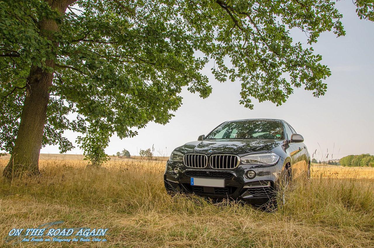 BMW X6 M50d Waldrand