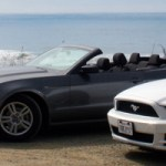 Mustang-21.jpg