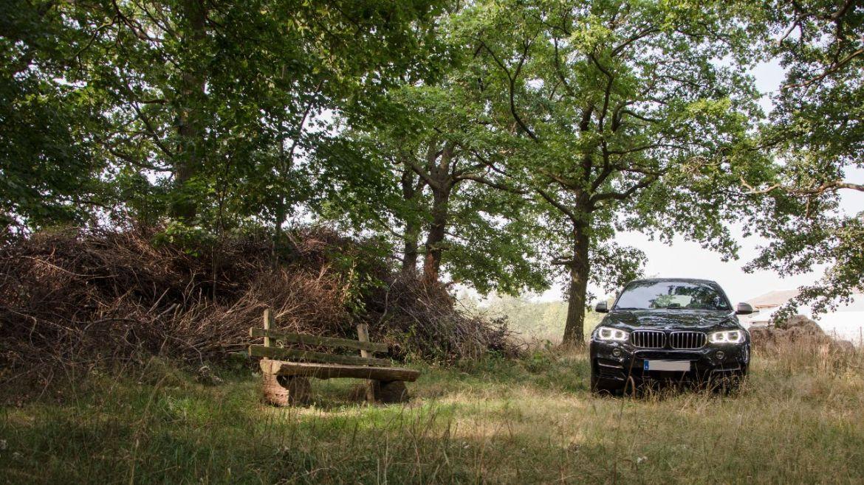 BMW X6 M50d am Scheiterhaufen