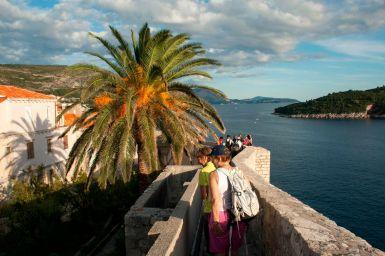 Palme in Dubrovnik