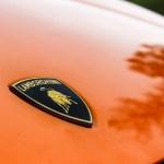 Lamborghini Gallardo LP 560-4 Spyder Frontemblem