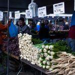 Gemüsestand auf dem Farmers Market Union Square New York City