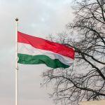 Ungarische Flagge