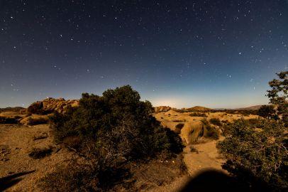Sternenhimmel im Josuha Tree Nationalpark