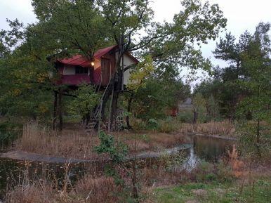 Baumhaushotel im Teich