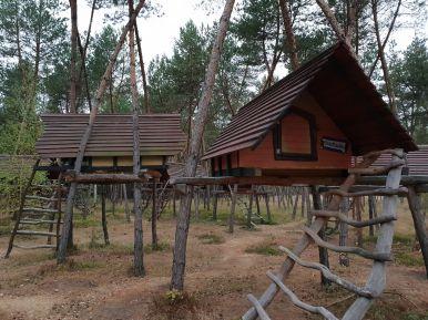 Brieftaube Baumhaus