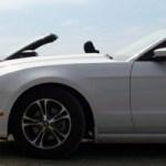 Mustang-11.jpg