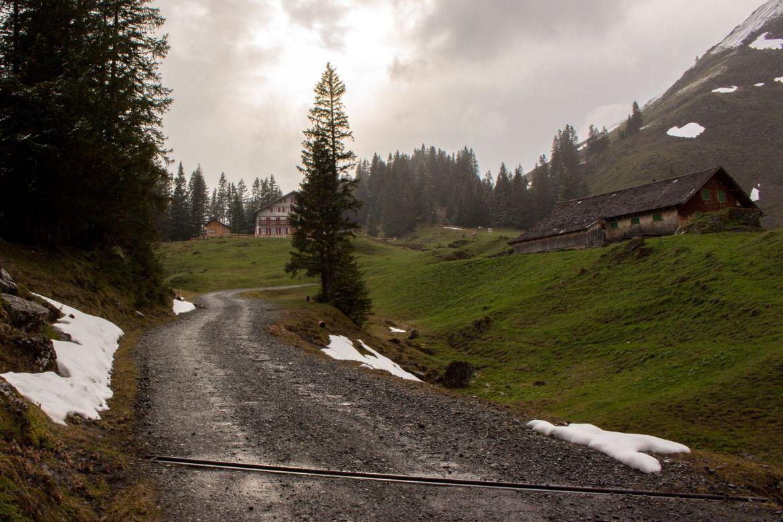 Gasthof Edelweis auf der Alm in Vorarlberg