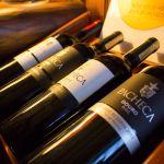 Pacheca Weinflaschen