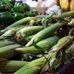 Grünes Gemüse in spanischem Supermarkt New Jersey