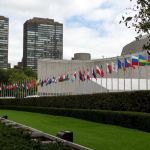 United Nations New York Flags