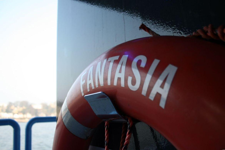 Fahrgastschiff Fantasia Hamburg
