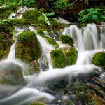 Nationalpark Plitvicer Seen Kroatien (10)