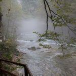 Nebel in der Vintag Klam, Slowenien