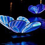 Butterfly Effect Artwork Amsterdam Light Festival 2019